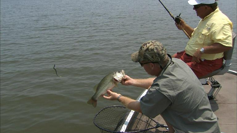 Carolina Outdoor Journal: Offshore Bite