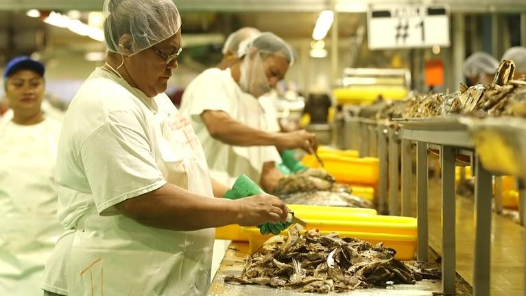 PBS NewsHour: Sea of obstacles imperil American Samoa's tuna industry
