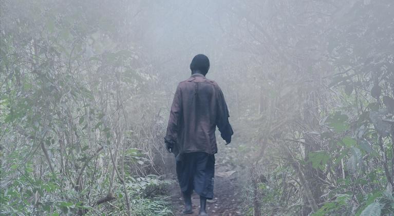 Doc World: Elephant Path - Njaia Njoku | Promo