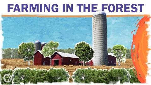 Hot Mess -- Can Farms and Forests Coexist?