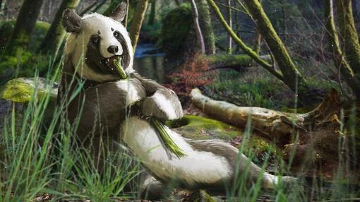 Eons : The Fuzzy Origins of the Giant Panda