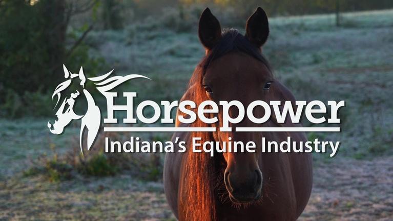 WTIU Documentaries: Horsepower: Indiana's Equine Industry (Pledge Event)