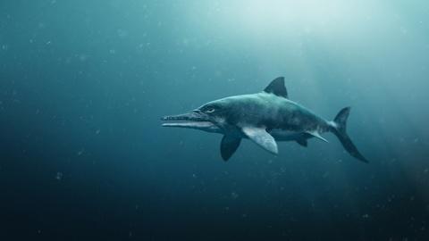 S37 E7: Attenborough and the Sea Dragon