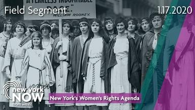 New York's Women's Rights Agenda