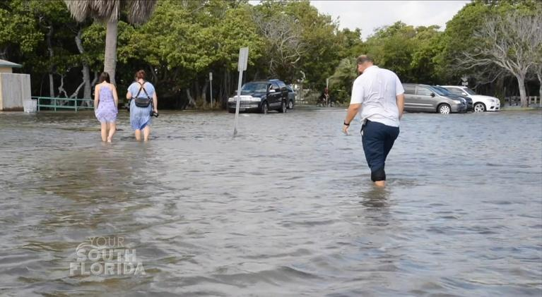 Your South Florida: Planning for Rising Seas | Your South Florida
