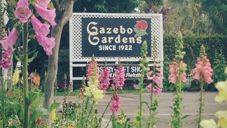 byYou Leadership & Workforce: 2018 Community Champion of the Year: Gazebo Gardens