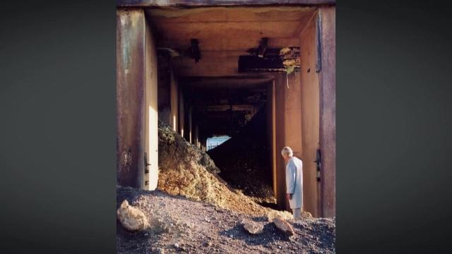 How Julie Bargmann uses toxic waste to transform landscapes