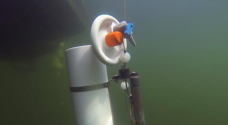 Idaho Science Journal: Testing Lake Coeur d' Alene