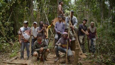 Earth Focus -- Forest Guardians Protect Their Land in Brazil
