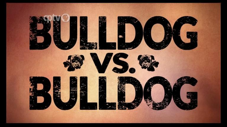 CPTV Documentaries: Bulldog vs. Bulldog