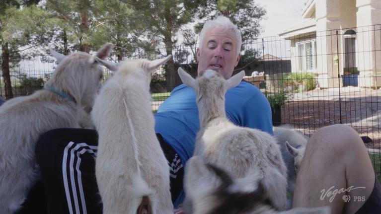 Outdoor Nevada: Let's Try Goat Yoga!