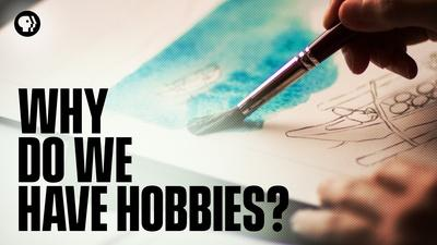 Why Do We Have Hobbies?