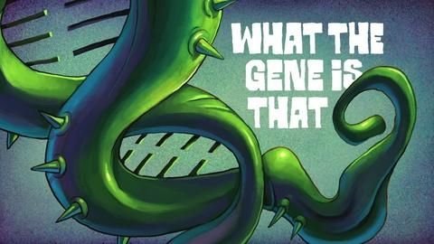 The Gene -- The Gene Explained | What the Gene Is That?