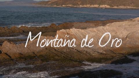 ViewFinder -- Walkin' California - Montaña de Oro