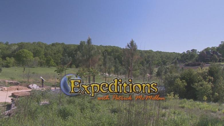 Season 4 Ep. 3: Sound – The Fullness of Nature Part 1 logo