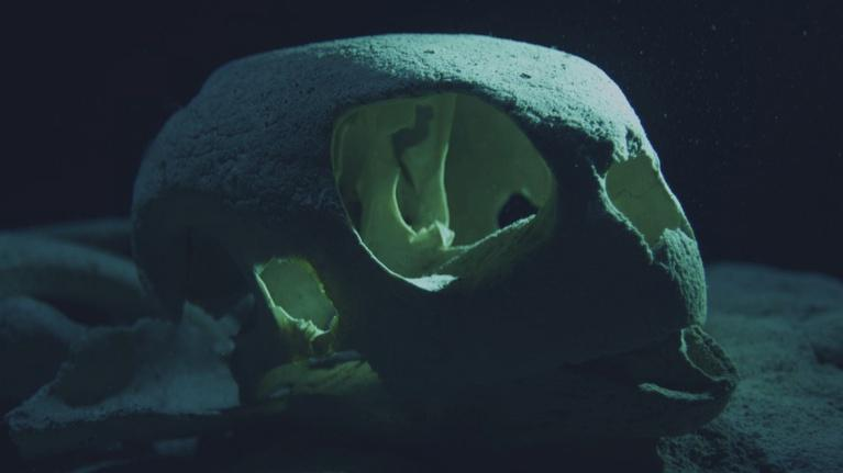 Big Pacific: Turtle Graveyard