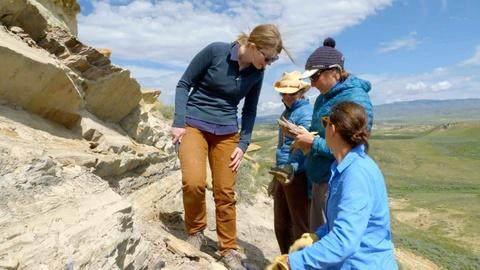 Prehistoric Road Trip -- Climate Change in the Fossil Record