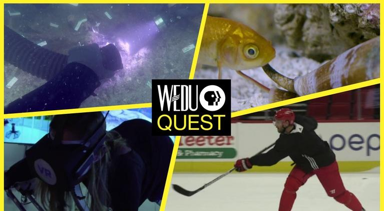 WEDU Quest: Episode 502