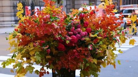 "NYC-ARTS Choice: ""Flower Flash"""