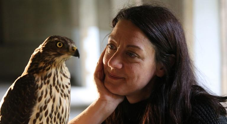 Scout Dialogue: Writers Collection: Falconer Helen Macdonald