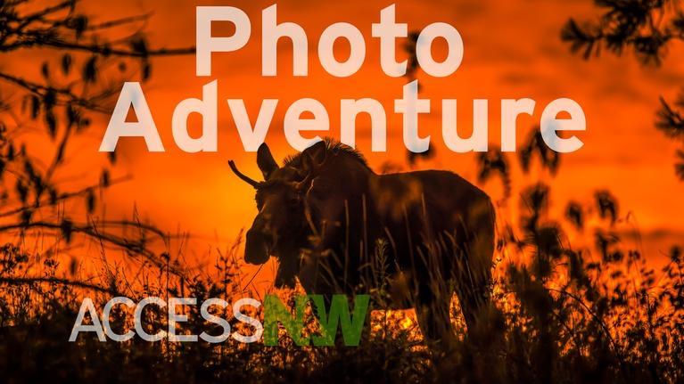 Access Northwest : Photo Adventure