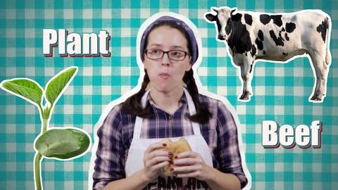 Serving Up Science -- Burger Brawl: Plant Protein Vs Meat