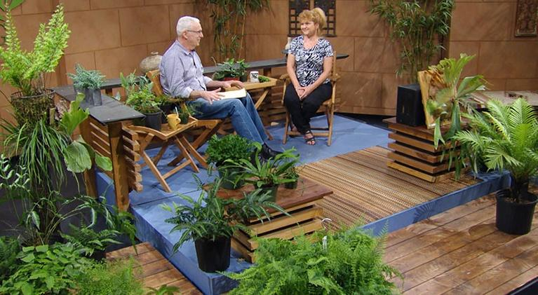 Central Texas Gardener: Fantastic Ferns for Indoors & Garden