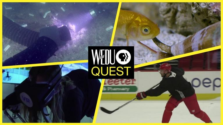 WEDU Quest: Episode 502 Preview