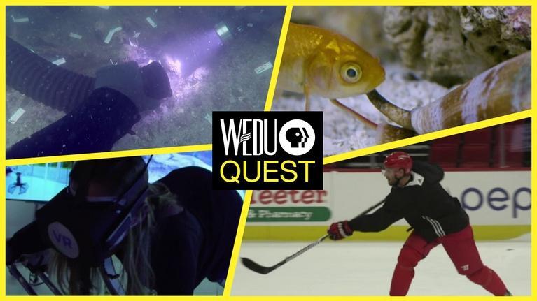 WEDU Quest: Episode 502 Preview