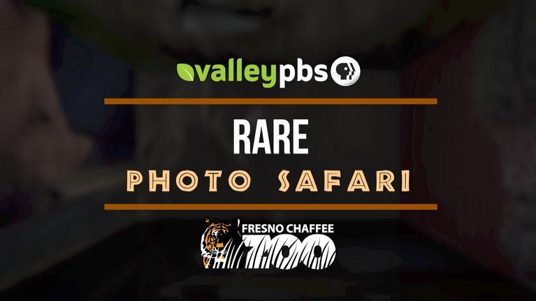 ValleyPBS Specials: Rare Photo Safari