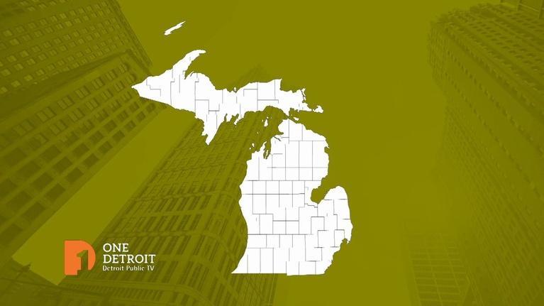 One Detroit: Election 2020/Detroit Public Theatre