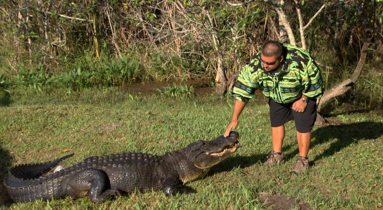Battleground Everglades: Glades Warriors