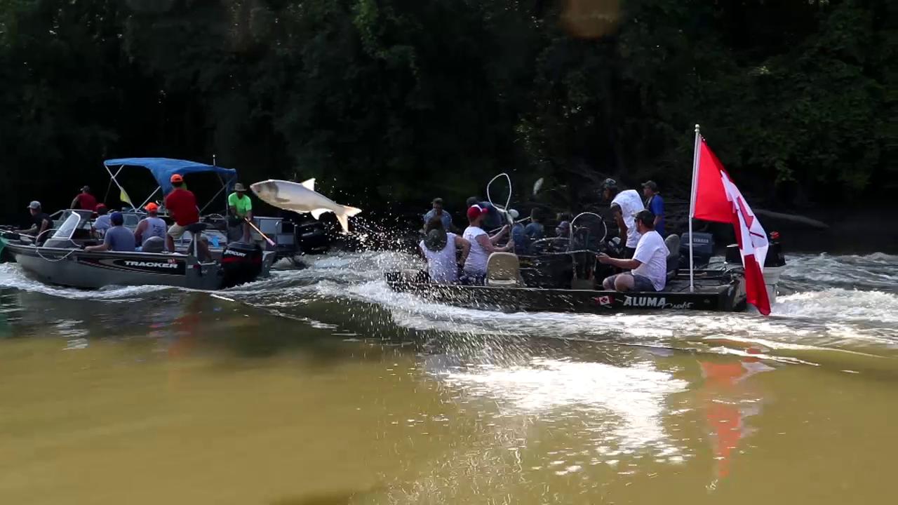Redneck Fishing' for Flying Asian Carp on Illinois River | Season ...