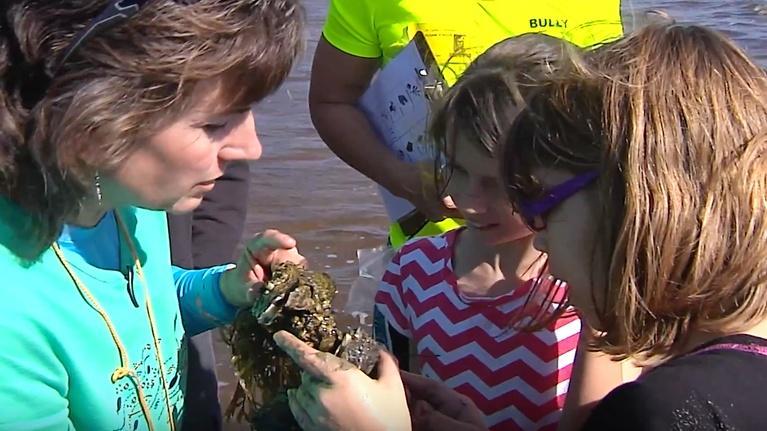 Curious Kids: Lake Okeechobee
