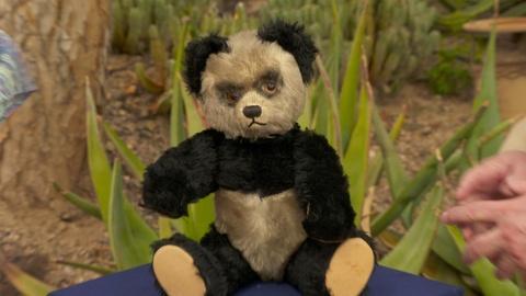 """S24 E10: Appraisal: Schuco """"Yes/No"""" Panda Bear, ca. 1955"""