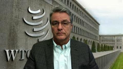 WTO Director-General Discusses Downturn in US Economy