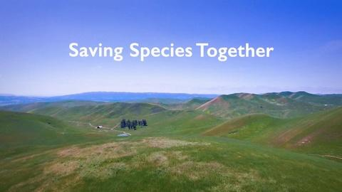 ViewFinder -- Saving Species Together Preview