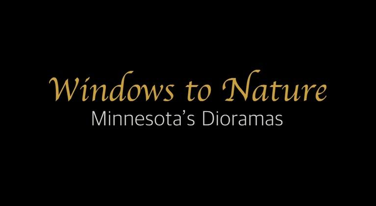 TPT Co-Productions: Windows To Nature: Minnesota's Dioramas