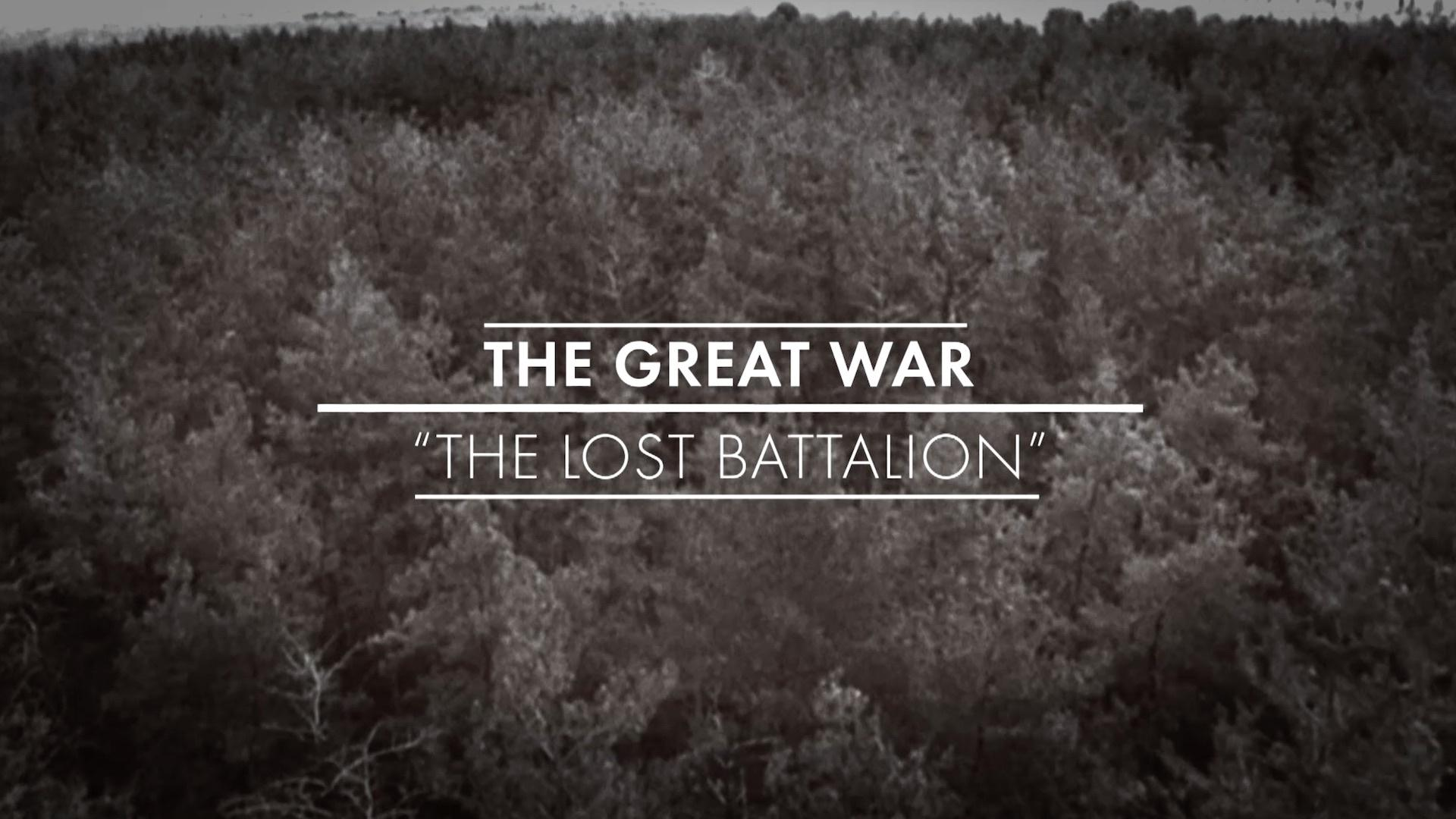 ''the experience of the great war Was the great war necessary  the second is highly defensible but the third evades the difficult and tragic aspects of britain's experience in the great war.