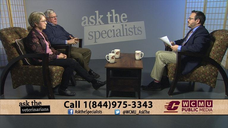 Ask The Specialists: Ask the Veterinarians