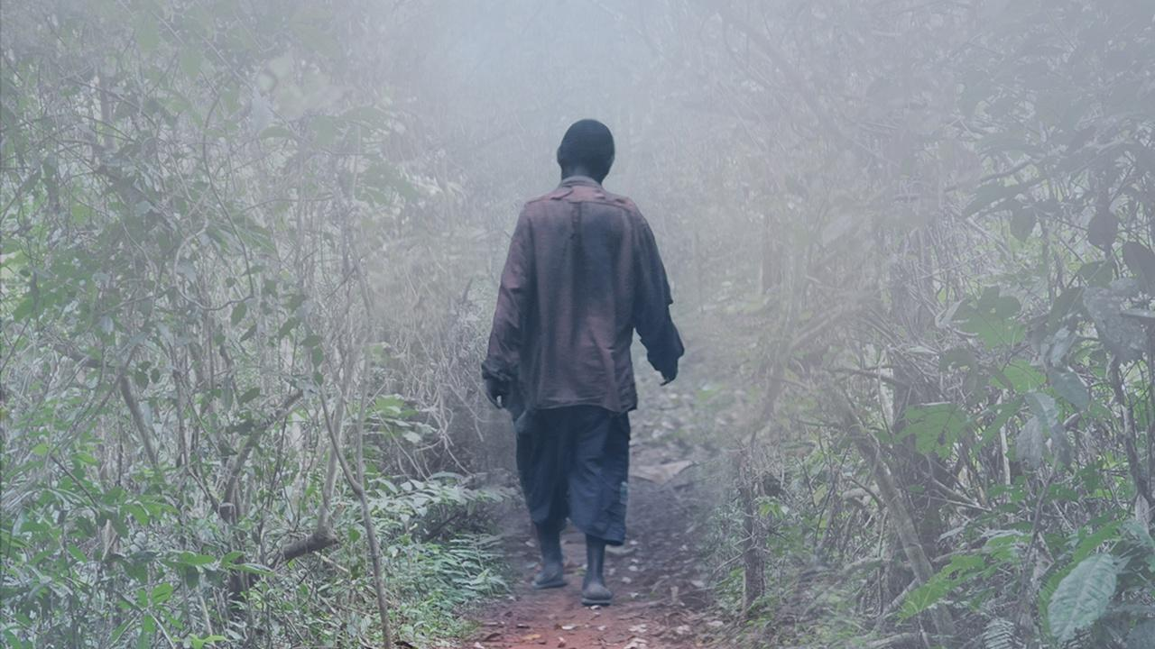 Elephant Path - Njaia Njoku   Promo