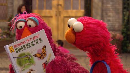 Sesame Street Videos | PBS KIDS