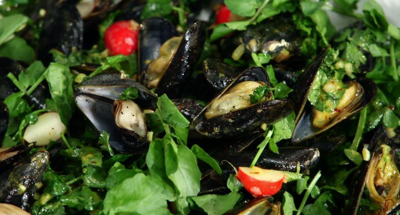 Martha Stewart's Cooking School   Coastal Favorites