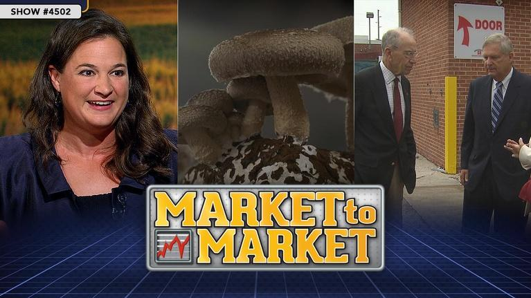 Market to Market: Market to Market (August 30, 2019)