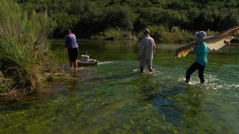Texas Parks and Wildlife: Devils River Advocates, Monahans Sandhills & the DNA Dude
