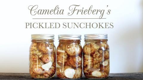 Kitchen Vignettes -- Camelia's Lacto-Fermented Pickled Sunchokes