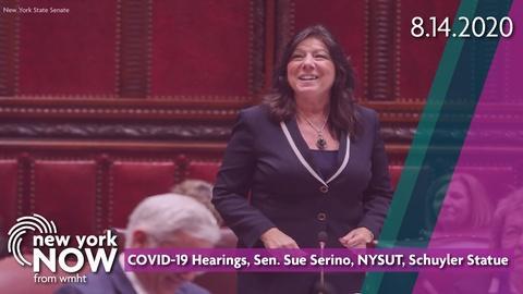 COVID-19 Hearings, Sen. Sue Serino, NYSUT, Schuyler Statue