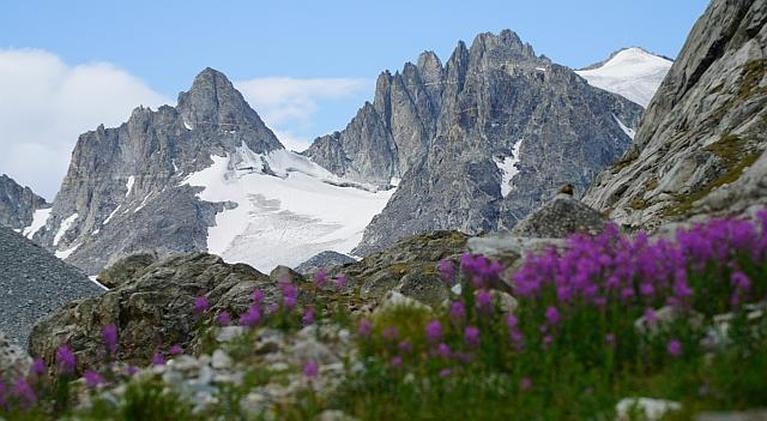 Wyoming PBS Documentaries: Glaciers of the Winds