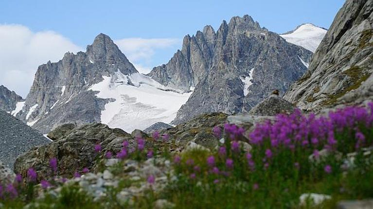 Wyoming PBS Specials: Glaciers of the Winds