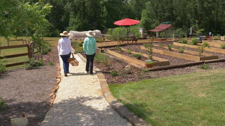Spotlight on Agriculture: Spotlight on Agriculture - Harvest for Health